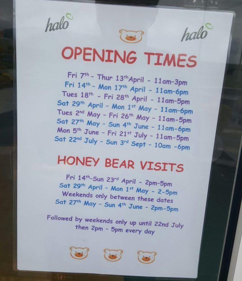 Holgates Ice Cream Shop and Cafe